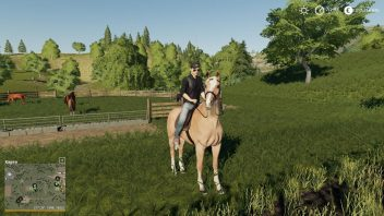 Гайд по лошадям в Farming Simulator 19