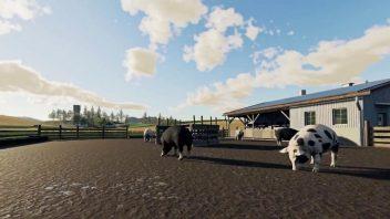 Как разводить свиней в Farming Simulator 19